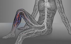Bild zu Venenchirurgie – 21621512-© lom123 – www.fotolia.com